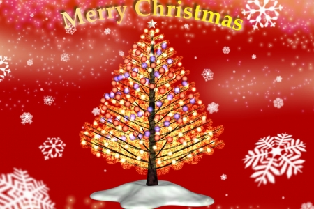 2008年11月 クリスマス・ツリー