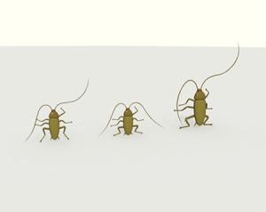 ゴキブリの敬礼(その他の3DCG)